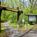 丸火キャンプ場は静岡県富士市で穴場なのに格安で野性味あふれるキャンプ場!!